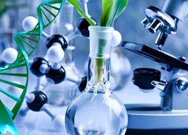 M.Phil Biotechnology